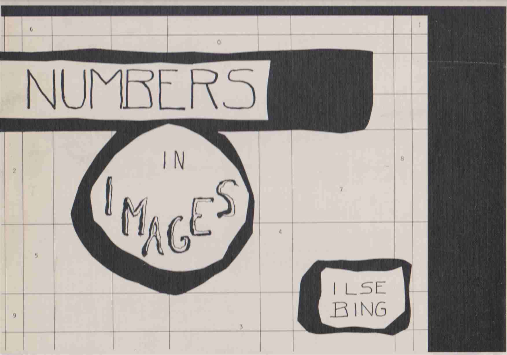 Image for NUMBERS IN IMAGES Illuminations of Numerical Meanings