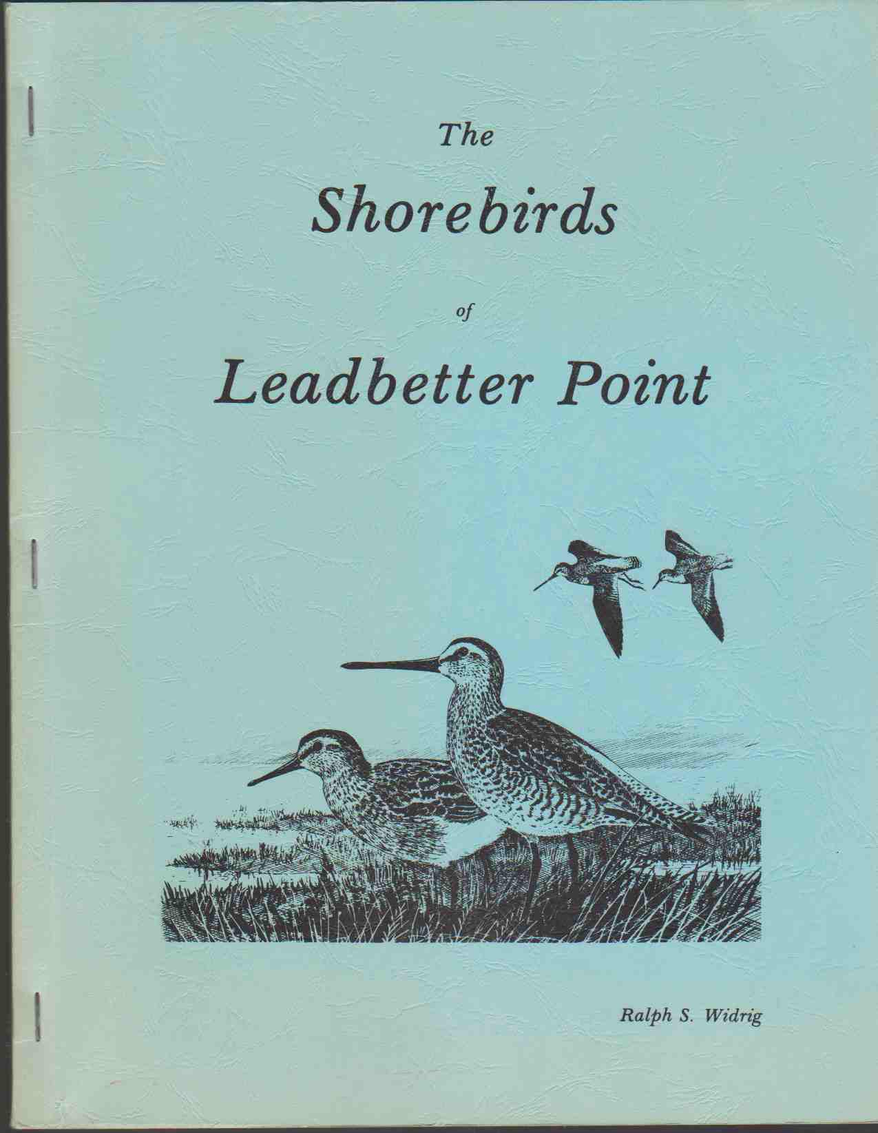 Image for THE SHOREBIRDS OF LEADBETTER POINT A Twelve Month Census with Notes on Other Records from Willapa Bay, Washington