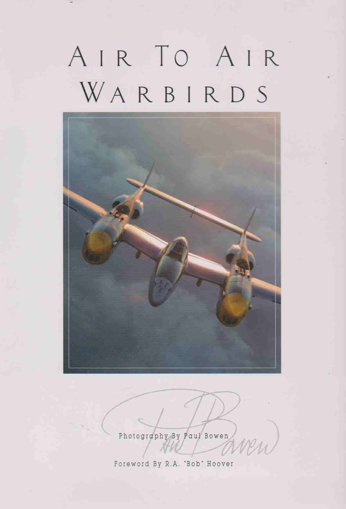 Image for AIR TO AIR WARBIRDS